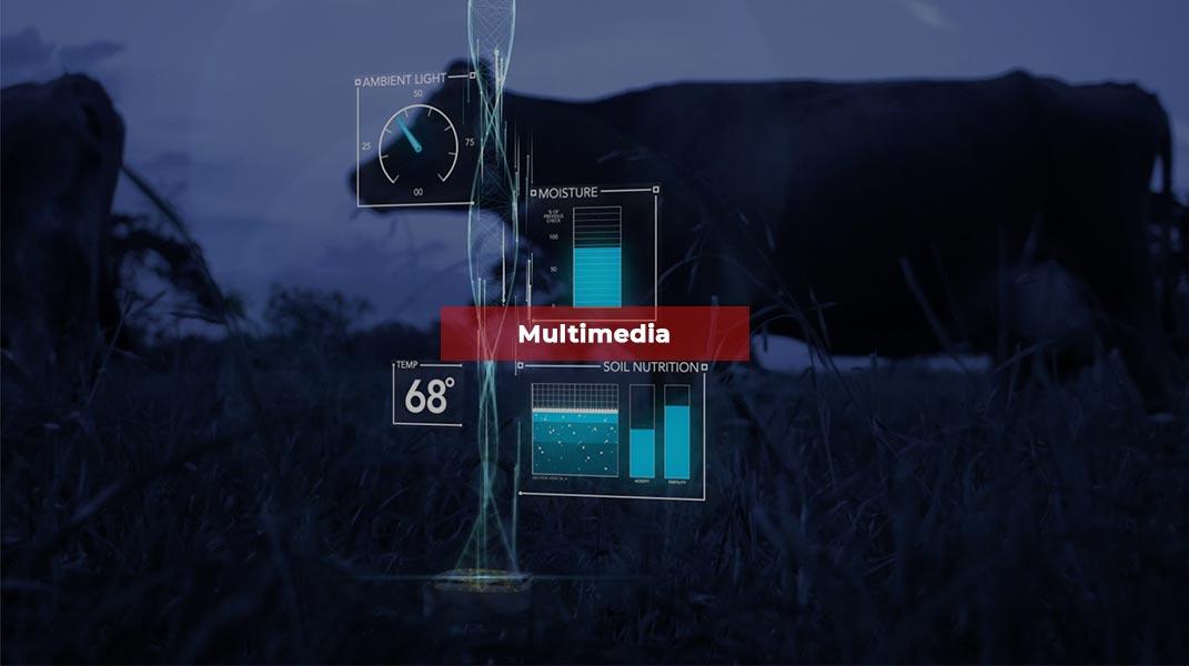home-multimedia-slider